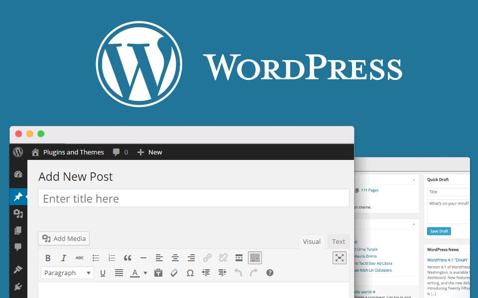 10 Bí Quyết Seo Website Blog Wordpress Cho Người Mới Bắt đầu