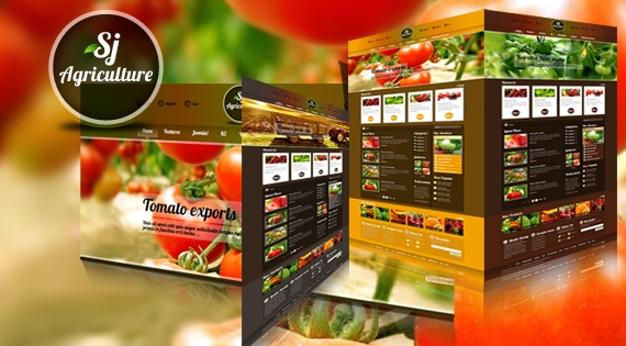 Thiết kế website bán hàng chuyên nghiệp2